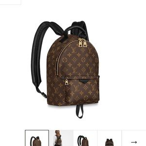 Palm Springs PM backpack